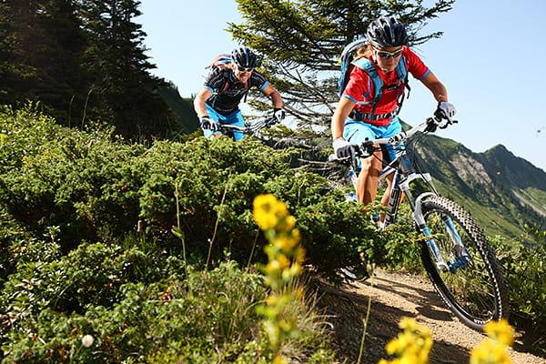 Hochwertige Mountainbikes für grenzenlosen Fahrspaß
